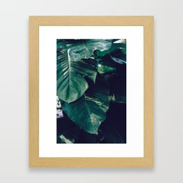 Green Leaves - Bali - Travel Photography Framed Art Print