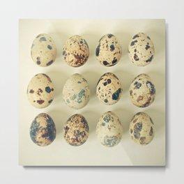 Quail Eggs Metal Print