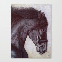 Horse Head - Ballpoint Pen Canvas Print