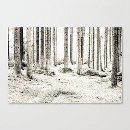 Tree Trunks II Canvas Print