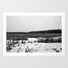 Frozen Swamp Art Print