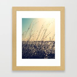 Forty-seven in the shade Framed Art Print