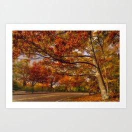 Fall Road,Chestnut Hill, Massachusetts Art Print
