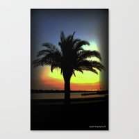 palm Canvas Prints featuring Palm by Chris' Landscape Images & Designs