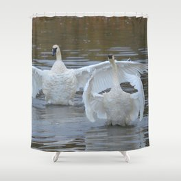 Swan Dance - Two out of Three Shower Curtain