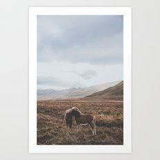 Iceland I Art Print