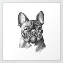 French Bulldog Drawing Art Print