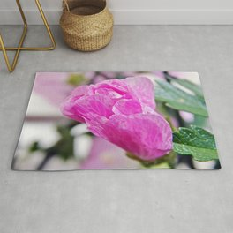 Pink Musk Mallow Rolled-up Rug