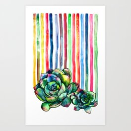 Rainbow Succulents - pencil & watercolor illustration Art Print