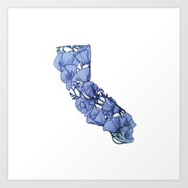 Blue California Art Print