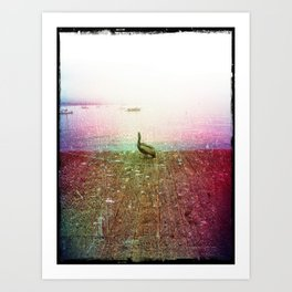 Santa Barbara Beach Pier Pelican Art Print