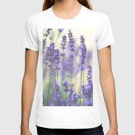 Summer Lavender T-shirt