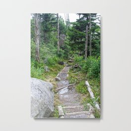 Color - Old Mountain Path Metal Print