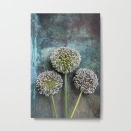 Three Allium Flowers Metal Print