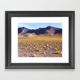 Life at 15,000 feet Framed Art Print