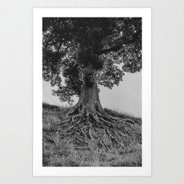 The Tree of Pies Art Print