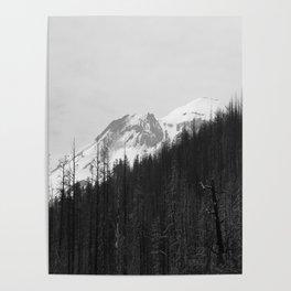Trees Die Poster