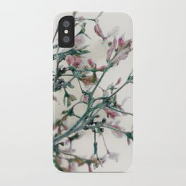 Fantasies in the deep of winter iPhone Case