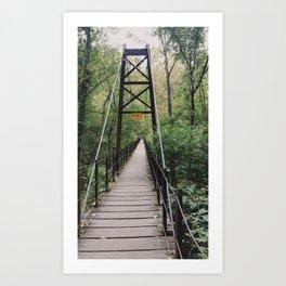 Swinging Bridge | Patapsco state park, Maryland Art Print