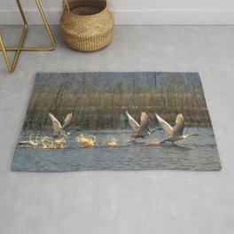Three for Lift Off Rug