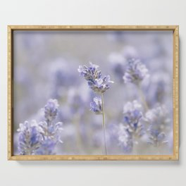 Sweet Lavender Serving Tray