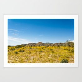 Super Bloom 7182 Paradise Joshua Tree Art Print