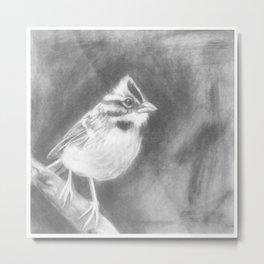 Bird # 1 Metal Print