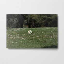 Footgolf and Butterflies Metal Print