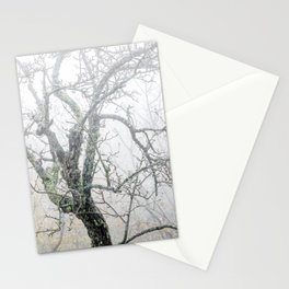 Naked tree surrounded by fog Stationery Cards