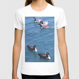 Ducks, Mallard Ducks, Lake Michigan T-shirt