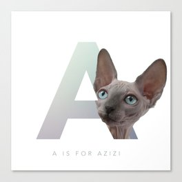 A is for Azizi Canvas Print