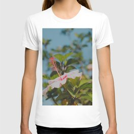 Soft Pink Hibiscus T-shirt