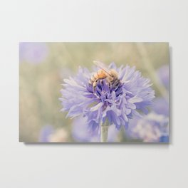 Anatomy of a Bee: Purple and Bee.3 Metal Print