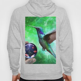 Colibri and the Pisces by GEN Z Hoody