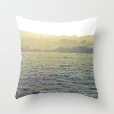 Light in the fields Throw Pillow