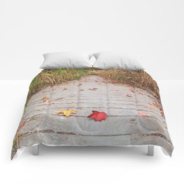 Autumn Marsh Boardwalk Comforters