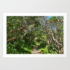 Craggy Gardens Walkway Art Print