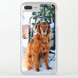 Bear Valley dog Clear iPhone Case