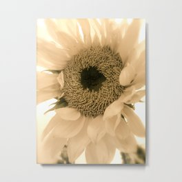 Dreamy Macro Sunflower Metal Print