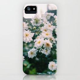 Ithaca Japanese Anemones iPhone Case