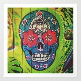 Mexican skull collection Art Print