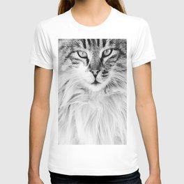 KEDİ T-shirt