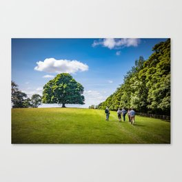 Walking in Skipton Canvas Print