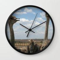 ostrich Wall Clocks featuring Ostrich by wendygray