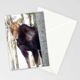 Molting Moose in Spring Stationery Cards