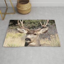 Watercolor Deer, Mule 21, Crestone, Colorado, Native Buck Rug