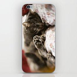 Pancho iPhone Skin