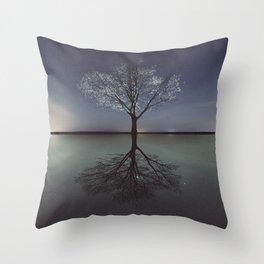 Mirrored Reality Throw Pillow