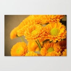 A Bright New Day Canvas Print