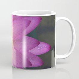 Nymphaea 'Darwin' II Coffee Mug